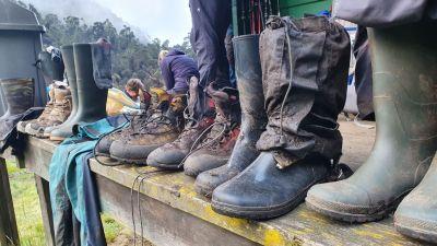 33 naše boty