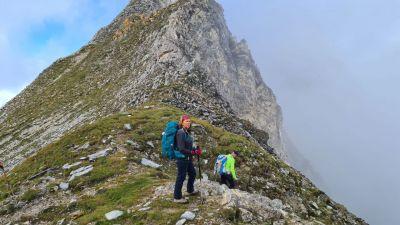 2c-steineres lam 2528 m