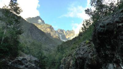 Divoký Réunion
