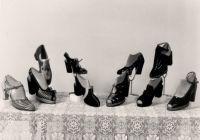 Ukázka bot